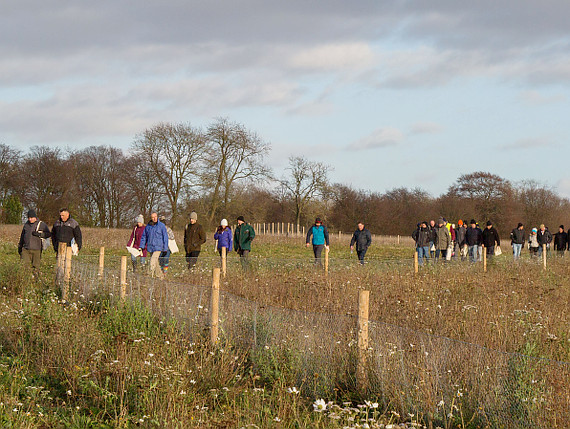Guided walk at Heatwood Forest