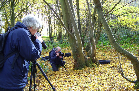 Two male photographers taking close ups of woodland flowers