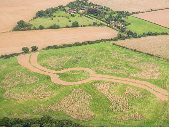 Aerial photograph of Heartwood Forest